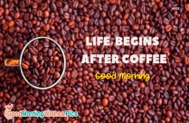 Life Begins After Coffee. Good Morning