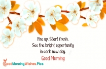 Rise Up. Start Fresh. See The Bright Opportunity In Each New Day