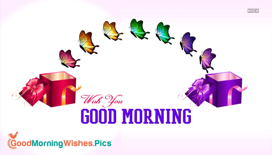 Good Morning Image With Beautiful Butterflies