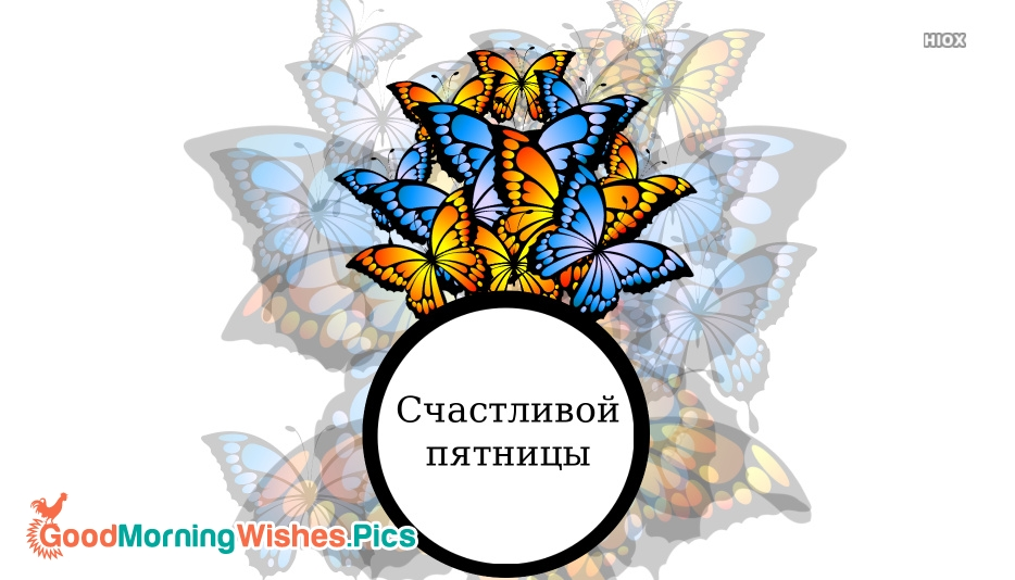 Have A Happy Friday (Russian) Счастливой Пятницы